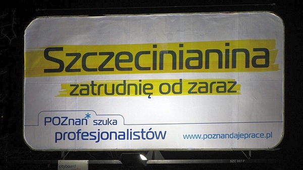 zatrudnię szczecinianina